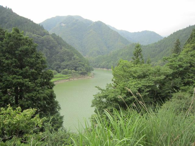 小和田天竜川