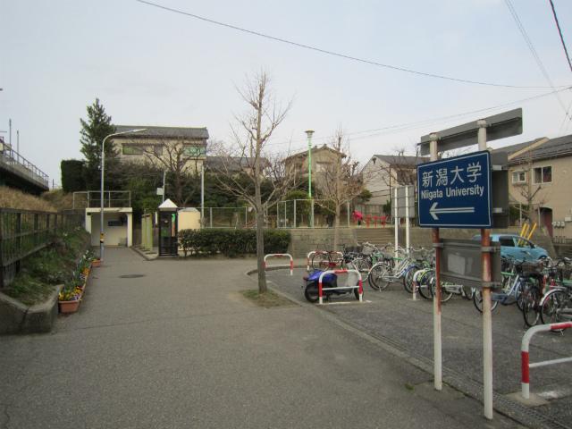 新潟大学前看板