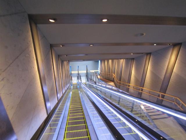 青葉山階段