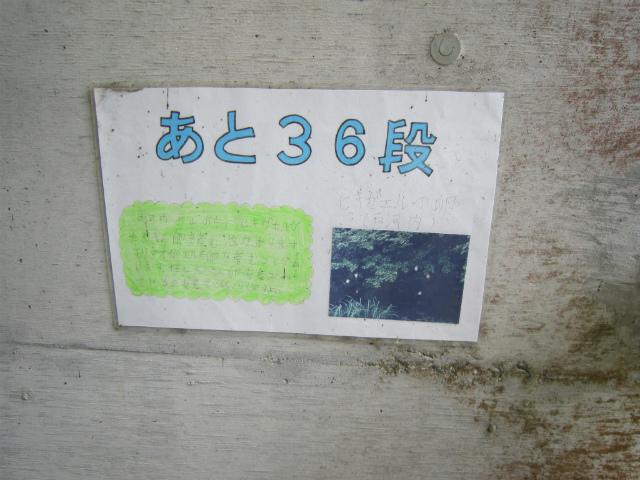 宇都井36