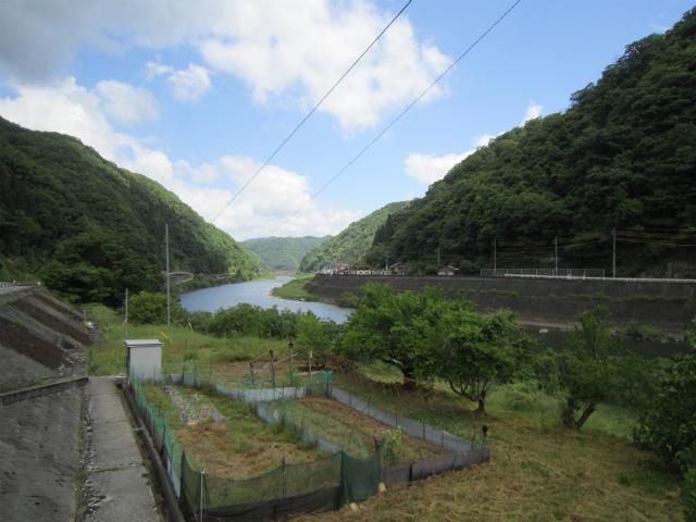 作木口江の川