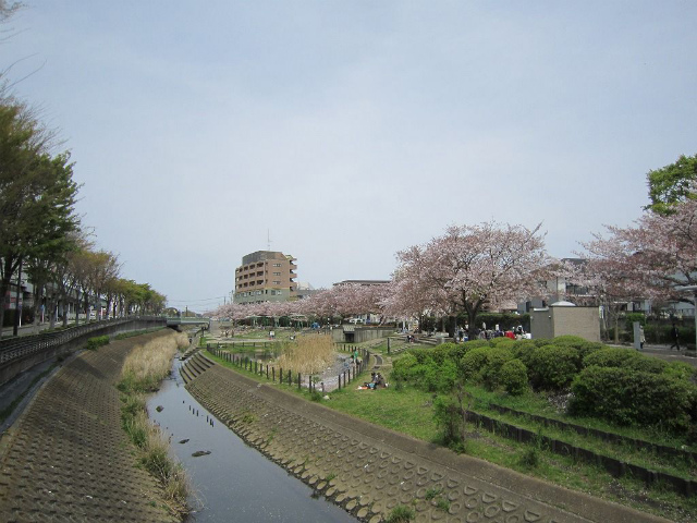 いずみ中央和泉川