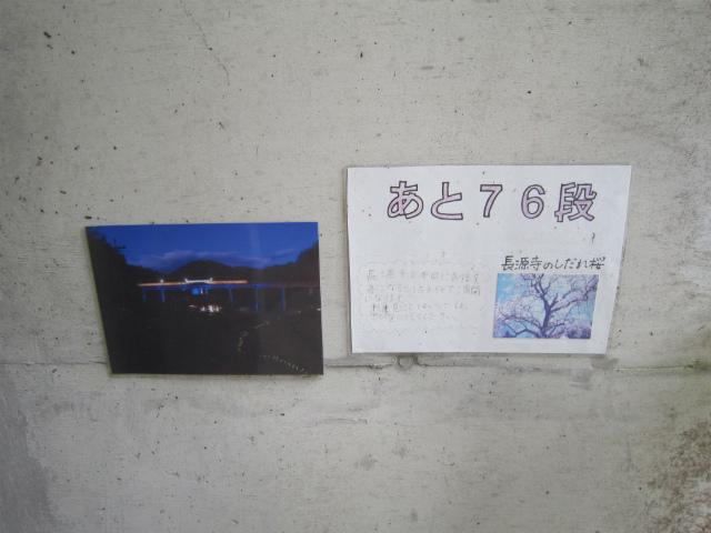 宇都井76