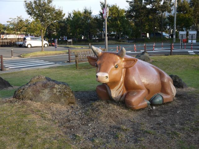 阿蘇あか牛