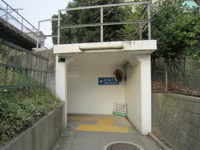 新潟大学前地下道